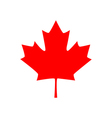 Canadian maple leaf icon vector image