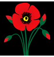 Poppy flower with buds vector image vector image