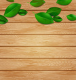 Wooden Background with Green Leaves vector image