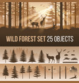 coniferous forest vector image