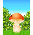 Mushroom in the forest vector image