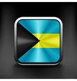Bahamas flag isolated on background national vector image