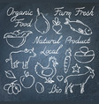 set of hand drawn eco food sketches on chalkboard vector image