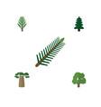 flat icon bio set of jungle park decoration tree vector image
