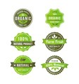 original nature badges vector image vector image