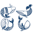 Funny whales vector image