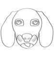 isolated weimaraner avatar vector image