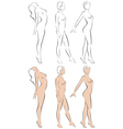 Stylized figures standing naked women vector image