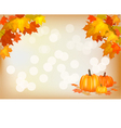 Autumn pumpkin holiday postcard vector image vector image