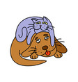 funny cat laying on the dog vector image