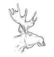 Hand drawn graphic moose vector image