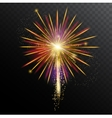 Colorful Fireworks Template vector image