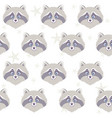 raccoon seamless vector image vector image