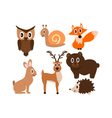 Forest cute animals vector image