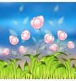 Purple tulips flower field vector image