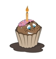 Funny cupcake with candle Cartoon style vector image