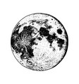 planets in solar system moon and astrology vector image
