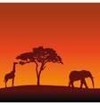 African Safari Silhouette Background vector image vector image