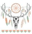 Ethnic deer skull Dreamcatcher feathers vector image