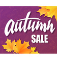 hand drawn autumn lettering sale label with leaves vector image