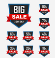 Set of luxury sale labels vector image