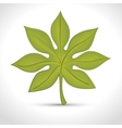 green leafs isolated design vector image vector image
