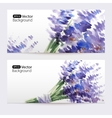 Two floral watercolor banners with lavender vector image