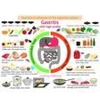 infographics proper nutrition Gastritis vector image