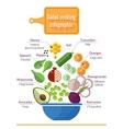 Vitamin salad vector image