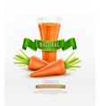 glass of carrot juice and two carrots isolated on vector image vector image