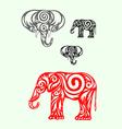 Elephant ornate vector image
