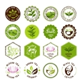Tea stamps collection Green and black tea badges vector image