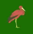flat shading style icon stork vector image