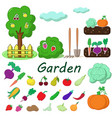garden with fruits and vegetables vector image