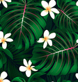 Tropical Monstera floral seamless pattern vector image vector image