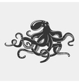 Octopus with tentacles and arms with suction cups vector image