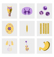 icons set in flat style human biology vector image
