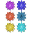 set of simple flower shapes in different colors vector image