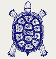Land turtle vector image