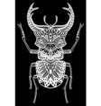 Zentangle Bug vector image