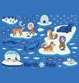 collection of polar animals eskimos and vector image
