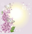 floral background with butterflies and a lilac vector image vector image