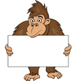 gorilla with blank sign vector image vector image