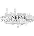nerve word cloud concept vector image
