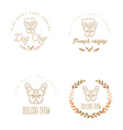 Set of logos with french bulldog and twigs vector image
