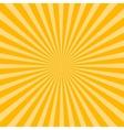 Sunburst pattern vector image