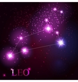 leo zodiac sign of the beautiful bright stars vector image vector image