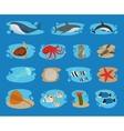 Sea animals icons vector image vector image