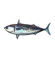 sketch cartoon sea fish tuna isolated vector image
