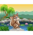 Cartoon happy squirrel posing vector image vector image